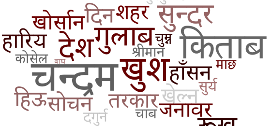 nepali words about food