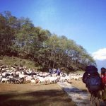 hike-to-ghale-gaun