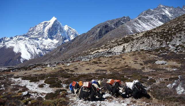 Hiring a Guide to Everest Base Camp